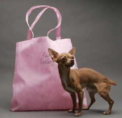 PuppyPurse Introduces The FurBaby Tote by PuppyPurse