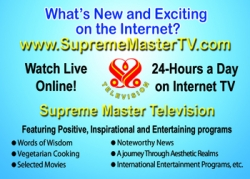 Supreme Master Television - Positive News for a Better World