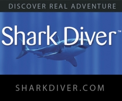 SharkDiver.Com CEO Featured on 20th Anniversary of Shark Week