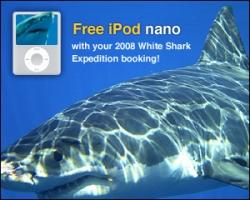 Go Sharkin' - Get the iPod Nano