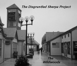 "The Disgruntled Sherpa Project Heads to ""The Wildwoods"" for Sixth Album"