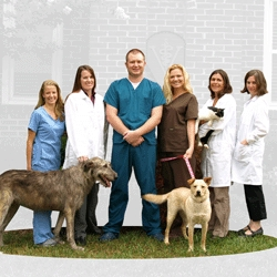 Dr. Tina Smith Joins Hardin Valley Animal Hospital as It Expands Its Staff and Extends Its Hours
