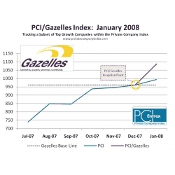2008 PCI/Gazelles Recognized as Benchmark Group of Top Growth PCI Companies