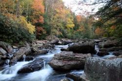 ForestWander Nature Photography Featured in Mountain Highlands Traveler Magazine