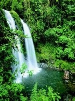 Costa Rican Blast: Quickly Create Your Own Vacation in Costa Rica, and Have the Most Fun in Your Life