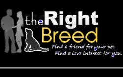 Animal Lovers Finally Have Their Own Online Dating Site