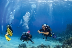 New Sail and Dive Course Boosts Learning Vacation Experience