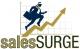 Sales Surge LLC.