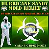 """Five Boro Mold Specialist: """"Over 100 Million in Red Cross Hurricane Sandy Relief Funds Still Available, Where's the Relief?"""""""