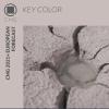 Color Marketing Group® Announces 2021+ European Key Color – Raison d'être