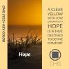 Color Marketing Group® Announces 2022+ Asia Pacific Key Color – Hope