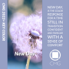 Color Marketing Group® Announces 2022+ North American Key Color – New Day