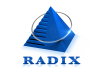 Radixweb's Logo Sculpture Unveiling – A Step Towards Reiterating Its Promise Towards Constant Innovation