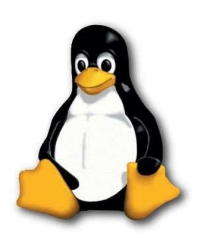 Linux Personal Shared Hosting Plan