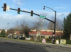 Decorative traffic signal poles