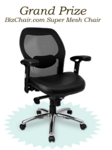 BizChair.com's Mother Day Contest Grand Prize: A Super Mesh Office Chair