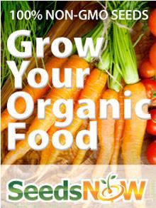Catalogs.com Gardening e-Retailer SeedsNow.com