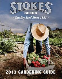 Catalogs.com Gardening Catalog Stokes Seeds