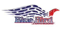 Blue Bird Limousine