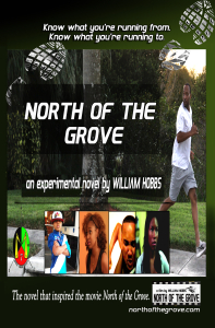 North of the Grove book cover