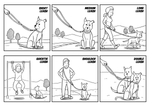 6 Ways to Use the Multi-functional Dog Leash