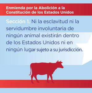 Section 1 - Spanish