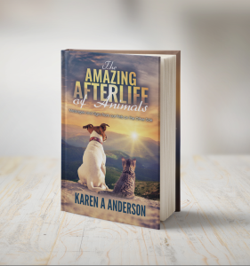 """""""The Amazing Afterlife of Animals"""" Book Cover"""