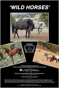 """""""Wild Horses"""" Movie Poster"""