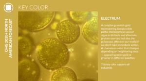 2020+ North American Key Color – Electrum