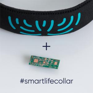 Lifecollar + Motherboard (Brain)