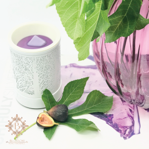 Product Picture in the Wax Warmer